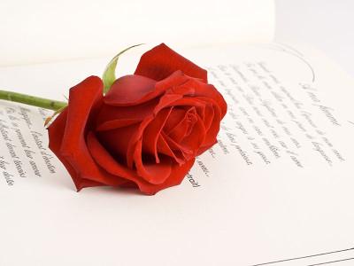 April 23: International Book Day
