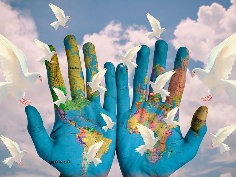 Forjando la paz juntos